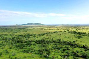 Serengeti National Park, Matawi Serengeti Camp, Zebra, Lion, Leopard, Cheetah, Hypo, Buffalo, Crocodile, Flamingo, Gnu, Giraffe, Antelope, Dik-Dik, Turtle, Aerial Views