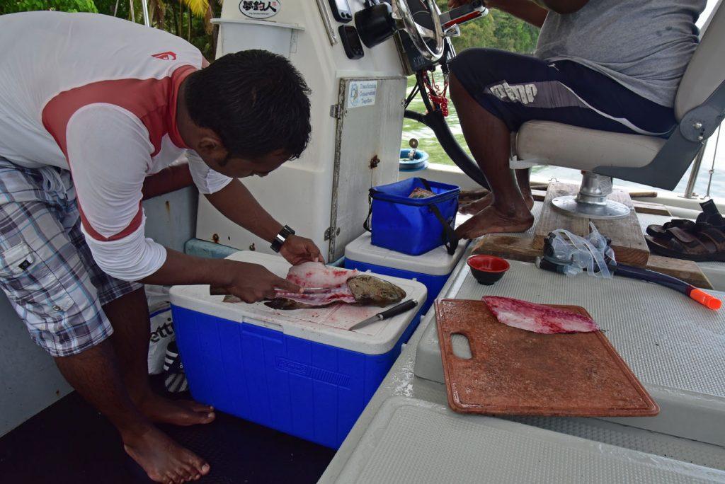 Transpacific 2016, Babelthuap island, Palau, Photo by Alficionado